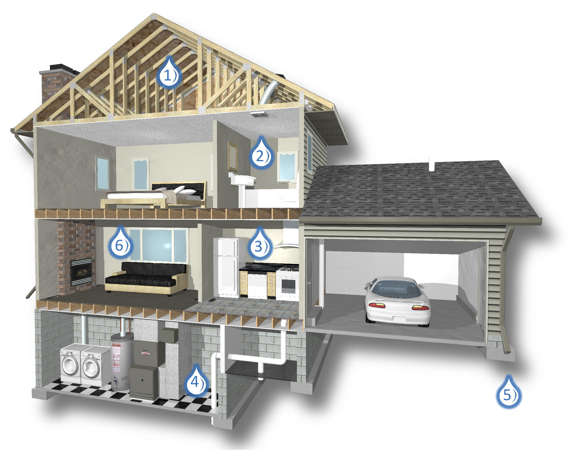 Mold and moisture house diagram